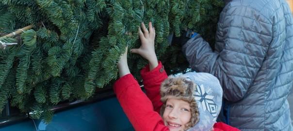 Getting the Christmas Tree Home